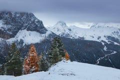 Mountain near Campitello di fassa, Dolomites, Italy Royalty Free Stock Images