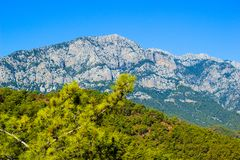 A mountain near Kemer, Turkey, vew from a hill, a pine branch in Stock Photography