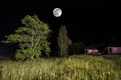 Mountain night landscape of building at forest in foggy night with moon. Green meadow, big trees and abandoned house at night. Nig. Mountain night landscape of stock image