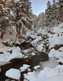 Mountain non-freezing stream Royalty Free Stock Photography