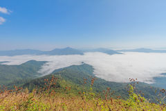 Mountain north of thailand Stock Photos