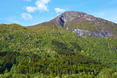 Mountain in norway Stock Images