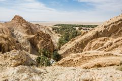Mountain oasis Chebika in Sahara desert, Tunisia Royalty Free Stock Photography
