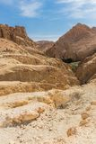 Mountain oasis Chebika in Sahara desert, Tunisia Stock Photo