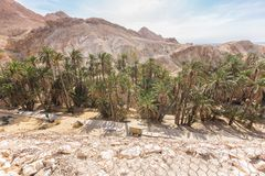 Mountain oasis Chebika in Sahara desert, Tunisia Royalty Free Stock Image