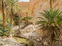 Mountain oasis Chebika in Sahara desert, Tunisia Stock Photos