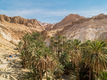 Mountain oasis Chebika in Sahara desert, Tunisia Royalty Free Stock Photo