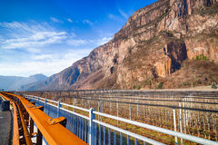 Mountain orchards. In Italy in winter Stock Photography