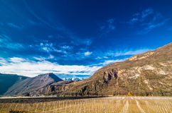 Mountain orchards. In Italy  in winter Stock Photo