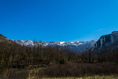 Mountain over forest. View on the peaks of Velebit mountain still covered in snow in early spring. Located in national park Paklenica. Forest of oak, spruce and Stock Images