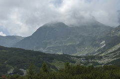 Mountain overgrown with coniferous forest and glade toward Maliovitza peak in Rila mountain. 