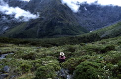 Mountain Overlook. A panoramic view into a valley from the vantage point of a high mountain overlook in Fiordland National Park, New Zealand Stock Photo