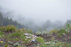 Mountain overlook Royalty Free Stock Image