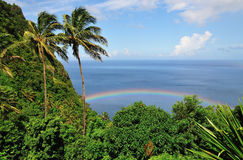 Mountain, Palms Trees Rainbow and Ocean Stock Photo