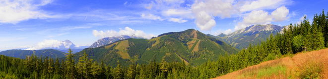 Mountain panorama in the austria alps. Summer view panorama mountain alps on blue sky with green forest and pink grase Stock Photos