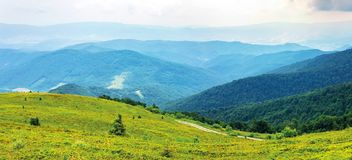 Mountain panorama on cloudy summer noon. Road winds uphill green meadows. beautiful nature landscape. forested distant ridge royalty free stock images