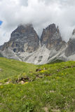 Mountain panorama of the Dolomites. In summer Royalty Free Stock Photography