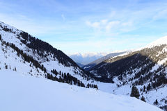 Mountain panorama and trees with snow in winter in Stubai Alps Royalty Free Stock Images