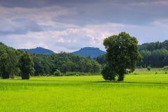 Mountain Papststein in Saxon Switzerland Stock Image