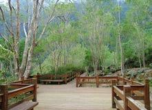 Mountain park Royalty Free Stock Photo