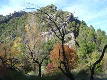 Mountain of the Parrizal in autumn, Beceite, Spain. Beautiful mountain and autumnal vegetation, with bare trees on the Parrizal de Beceite route royalty free stock image