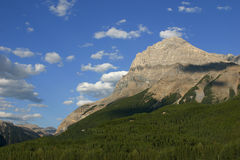 Mountain Pass. A mountain pass with blue skies and spruce/pine forests in alberta canada Royalty Free Stock Images