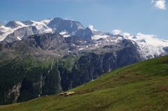 Mountain pasture, Alps Stock Images