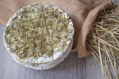 Mountain pasture cheese with hay Stock Photos