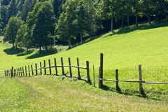 Mountain pasture meadows with fence Stock Photo