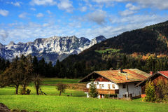 Mountain Pasture at the sea of Kings in Berchtesgaden Stock Images