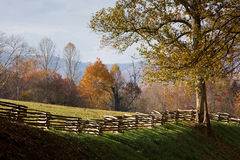 Mountain pasture with split rail wooden fence Stock Photos