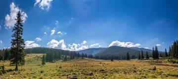 Mountain pastures Royalty Free Stock Photos
