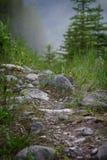 mountain path Royalty Free Stock Image
