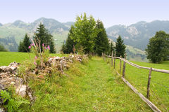 Mountain path. Between rock and wooden fence stock image