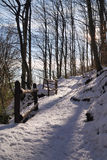 Mountain path. Covered by snow Stock Image