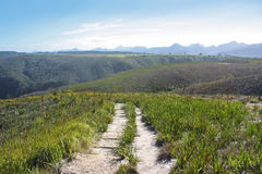 Free Mountain Path Royalty Free Stock Photography - 12397297