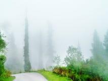 Mountain Path Stock Photography