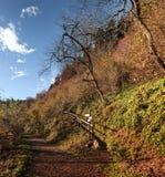 Mountain path in autumn season, Campo dei Fiori - Varese Stock Image