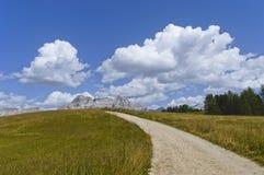 Mountain path, Dolomites. Mountain path through a green meadow, Dolomites - Italy stock photo