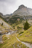 Mountain Path In Canyon Anisclo Stock Image