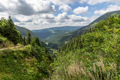 Mountain Path In The National Park Krkonose Royalty Free Stock Photography