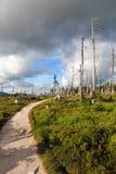 Mountain path in Krkonose Royalty Free Stock Photos