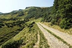 Mountain path leading to Gendarme and Bliznitsa Mountains. Ukraine, Carpathians, Dragobrat Stock Photography