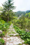 Mountain path . Royalty Free Stock Images