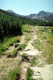 Mountain path and mark. On Retezat National Park royalty free stock photo
