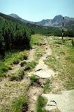 Mountain path and mark. On Retezat National Park Royalty Free Stock Photo