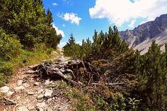 Mountain path in the mountains Stock Photography