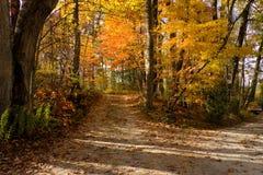 Mountain path near Asheville, North Carolina stock photo