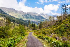 Mountain path Royalty Free Stock Photos