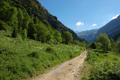 Mountain path in Pyrenees Royalty Free Stock Photography
